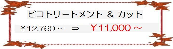 coupon_03-10-2.jpg